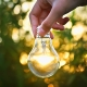 Stopniowa rezygnacja z technologii żarowych źródeł światła